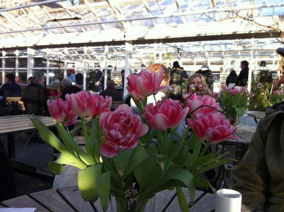 På Rosendahls trädgårdar i mars
